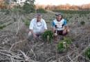 Sistema agroecológico é uma das soluções para a Conservação do Solo