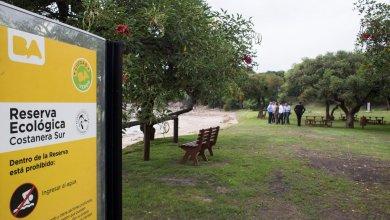 Photo of Mejoras en la Reserva ecológica