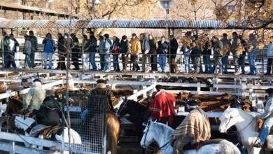 Photo of El Mercado de Hacienda: ¿qué pasará con las familias que viven en el predio?