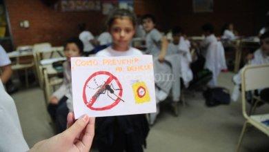 Photo of Ademys denuncia casos de Dengue en escuelas