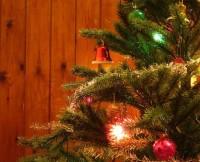 """""""A origem do Natal é muito vaga"""", afirma historiadora. Confira relação de festas que podem ter originado a festa cristã"""
