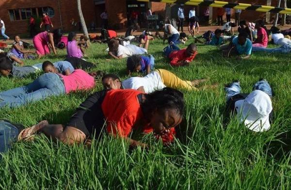 """Fiéis comem grama a mando do pastor para """"ficarem mais perto de Deus"""""""