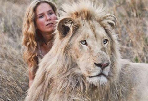 Mi mascota es un leon