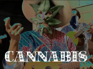 """Con su canción """"Mari la Iguana"""", la senadora Jesusa Rodríguez pide legalización de la mariguana 6"""