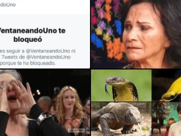 Paty Chapoy entrevista a Enrique Guzmán tras acusaciones de Frida Sofía y las redes no la perdonan (reacciones y mejores memes) 9