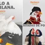 """Con """"Pollo a la poblana"""", Bachoco se vuelve tendencia en redes sociales. 5"""