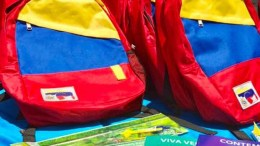 morralito-tricolor