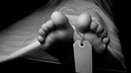cadaver-pies
