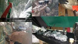 Desmantela-laboratorio-cocaina