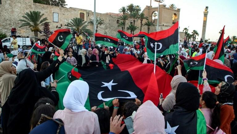 Fuerza Libias pro