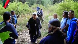 Foto: paicilantriao.blogspot.com.ar