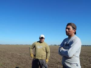 Foto: Las cosechas son ajenas.