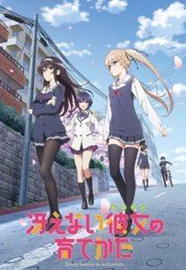 Saenai Heroine no Sodatekata NAU Animes da Temporada de Inverno 2015