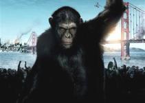 "3749aaa8ee129d7e919bddcc7e09cd36 - Trailer y Estreno de ""El Origen del Planeta de los Simios"""
