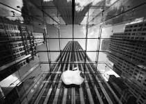 52738552667e33eb1fba35383a2da217 - Decepción Apple: la compañía se desploma en bolsa pese a ganar un 54% más