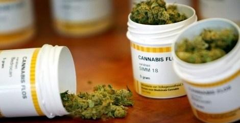 ed86a10d9531c7d1cd931654782f5cb3 - La marihuana impide el desarrollo del VIH en su etapa final