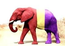 945a0a7a8f2da41b3a456e91531d5e81 - Documental: El elefante del Rey