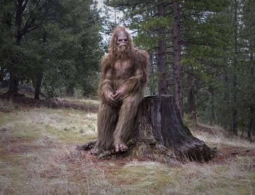 0120feb98838d333fb173acb9f52435c - Bigfoot, acorralado por la ciencia