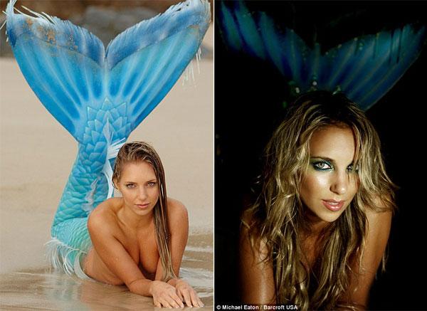 sirena2 - Sirena australiana nada junto a las ballenas