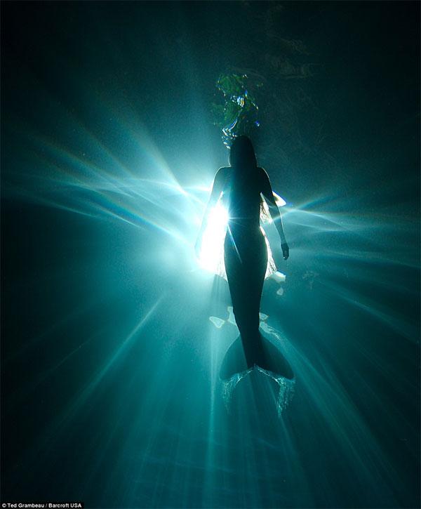 sirena5 1 - Sirena australiana nada junto a las ballenas