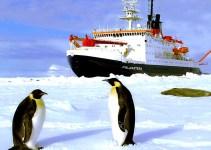 12d0891bf2f928b0adcb999de7f1d689 - Fertilizar el océano con hierro para combatir el cambio climático