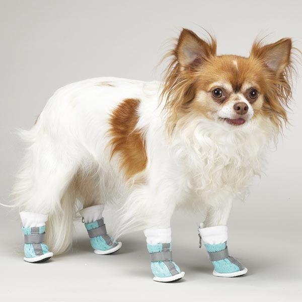 4aaa47e421ea0ce0fff92a19463c8673 - Productos curiosos y útiles para tus mascotas