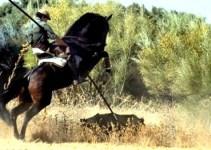 f8ca3288767754fc758c322791ba6d82 - Cospedal devuelve a Castilla la Mancha al paleolítico al recuperar la caza del jabalí alanceado a caballo