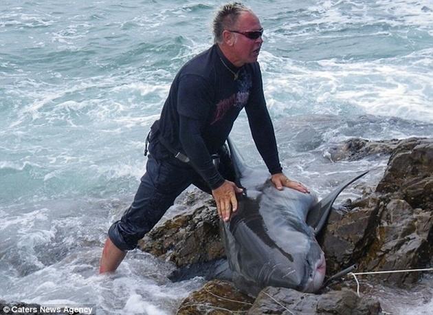 21932c06430f4fed99e3c8195fc591d6 - El primer condenado por pescar un tiburón blanco