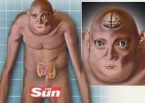 eaf80b1a3859e30c573d8d43cac3c5c9 - El hombre del futuro tendrá el cerebro y los testículos más pequeños, afirman científicos