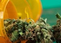 59437b685c157fee8ac8f48879cdf516 - Estudio revela que pastilla de marihuana sería más efectiva para el dolor