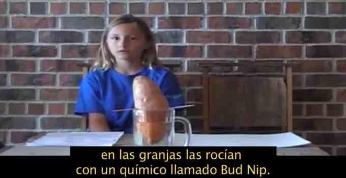 b94d8198bf2637534fc287ee6febc432 - #Video Una niña hace un proyecto de ciencias y descubre la horrible verdad sobre el Bup Nip