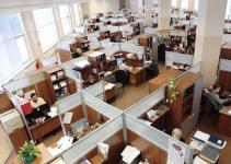 679c97570ef5b01b2bfe27cd1b0d9c76 - La fauna de oficina: 20 tipos de compañeros de trabajo