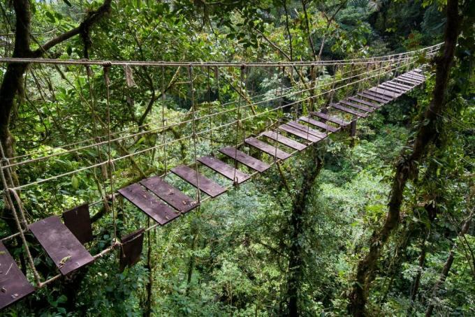 puente 8 300x200 - Los 10 puentes  peligrosos e increíbles del mundo