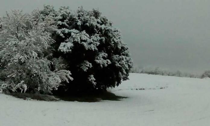 Imagen correspondiente a un episodio anterior de nevadas en Arnedo