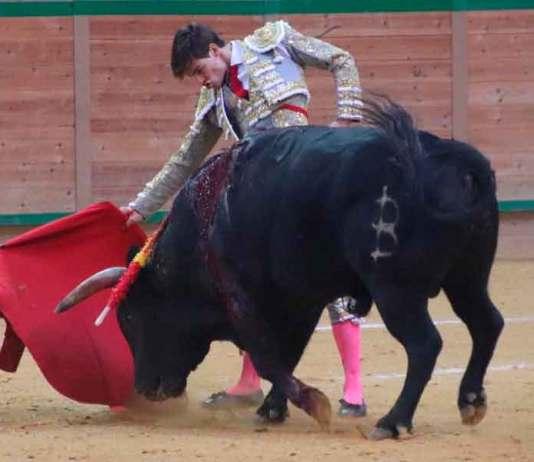 El Rafi en el Arnedo Arena con el novillo 'Lastimoso' de Baltasar Iban