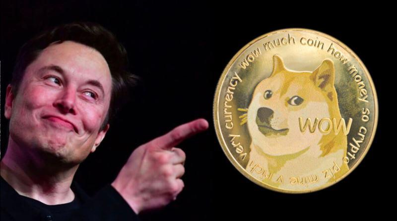 El Dogecoin se desploma después que Elon Musk admita que es un timo