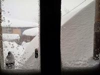 Nieve en el Occidente 2