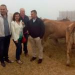 Desarrollo Rural invertirá 41.200 euros en el monte de La Bobia, en Villanueva de Oscos