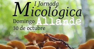 Jornada Micológica en Allande