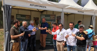 asturforesta en portugal