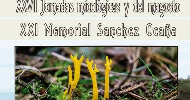 Jornadas micologicas Tapia