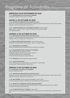 Fiesta Vendimia Cangas 01