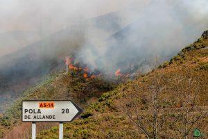 Asturias solicita la intervención de la UME para luchar contra los incendios forestales 1