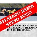 Aplazado el Concurso del Caballo de Belmonte