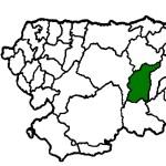 Belmonte de Miranda COVID19