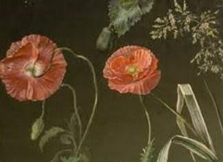Paisaje y Flores renovación del dibujo académico en el siglo XIX