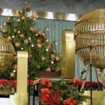 Aumento de venta loteria de Navidad en Salamanca 2015