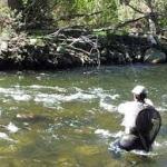 Nuevas Normas reguladoras de pesca Castilla y León 2017