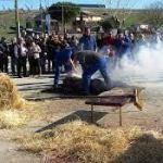 Matanza Tradicional provincia Salamanca 2019/20