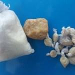 AÇÕES POLICIAIS – Jovem é preso com drogas na rodoviária de Cabo Frio